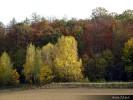 Kouzlo podzimu_3